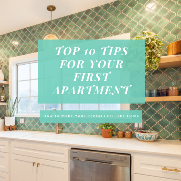 Top 10 Tips for Your First Apartment: How to Make Your Rental Feel Like Home